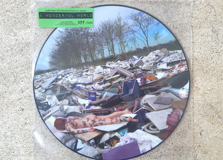 A WONDERFUL WORLD - picture disc