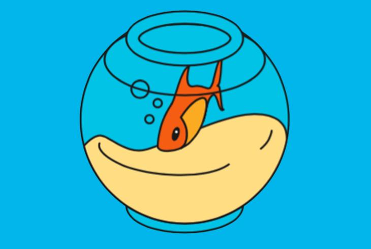 poisson rouge dans un aquarium sur fond bleu